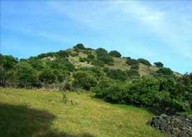 Sierra del Cambrón